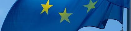 Web banners(17)